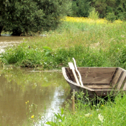 Drveni čon